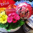 母の日プレゼント 鉢植え ガーベラ 鉢植え ミニーバルーン付き 花言葉は感謝♪ ◆母の日ギフト プレゼント 鉢植え 花鉢