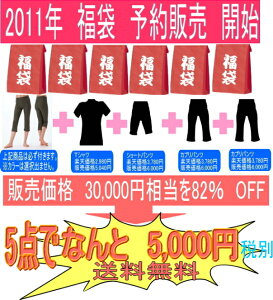 すべて日本製★半袖フィットネスウェアとパンツ4点★吸汗、速乾★スーパーストレッチ素材2011年...