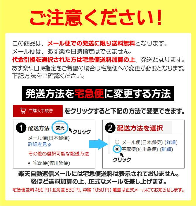 日本製水着レディース水着フィットネス水着セパレート121ノースリレディース女性用ルモード【あす楽対応_関東】fs04gm