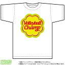 バレーボールチャンピオンTシャツ(DryT-shirt:白)