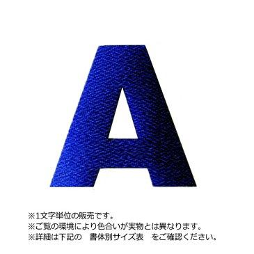 アイロンワッペン文字(10cmサイズ/アルファベット)