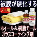 ホイール&樹脂モール専用硬化型ガラスコーティング剤「SG-W...