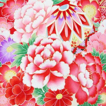 女の子 夏のお宮参り着物 dgro08 絽 (赤)