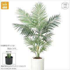 【観葉植物/造花】■160cmアレカパームツリー