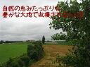 大人気商品!北海道産 新米 令和元年度産ゆめぴりか10kg
