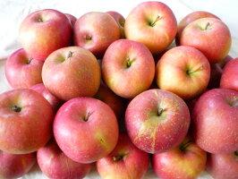 北海道のリンゴ