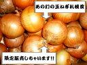 送料無料(地域限定) 北海道産 幻の北海道玉ねぎ 札幌黄M〜Lサイズ 10kg
