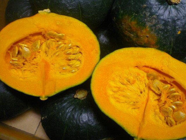 送料無料 北海道産店長厳選ほくほく あま~い「今」美味しいかぼちゃ 約10kg