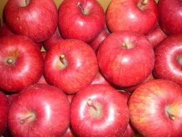 北海道のリンゴふじ