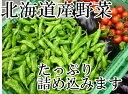 送料無料!冷蔵便込!北海道産四季のとれたて野菜詰め合わせセッ...