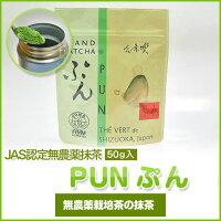 掛川茶粉末茶粉末緑茶無農薬抹茶グリーンティー抹茶ラテ