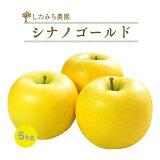 【送料無料】岩手産完熟りんご【シナノゴールド】5kg/16玉〜18玉/めぐり菜
