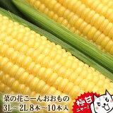とうもろこし 極甘品種おおもの 生で食べられる 菜の花こーん 8本〜10本(約3.5k以上) 3L〜2L 朝採り 農家直送 ゴールドラッシュより甘い品種おおもの 予約