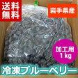 【送料無料】【28年産】【国産】岩手県で育った冷凍ブルーベリー1kg(加工用)【送料込み】02P03Sep16※沖縄・離島は送料無料の適用外です