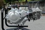 パフォーマンスZ-1型125CCエンジン ミニモト(Minimoto) 【送料無料】 【ホンダ4miniパーツ】