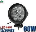 【送料無料】1年保証 ノイズ対策CREE製5W高出力LED端