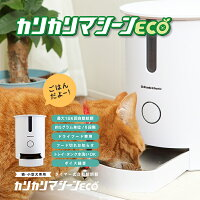 猫用自動給餌器