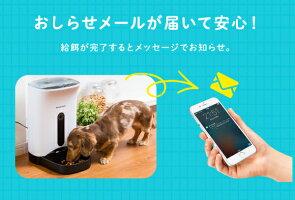 スマホ遠隔自動給餌器ペットカメラ付きカリカリマシーンSP見れる話せる犬猫用自動給餌機日本メーカー1年保証サポート付で安心送料無料ドライフード専用ッグフード&キャットフード自動給餌機自動きゅうじ器でルスモ安心自動餌やり機