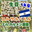 エルサルバドル エルカルメン【1kg】生豆
