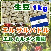 エルサルバドルエルカルメン【1kg】生豆