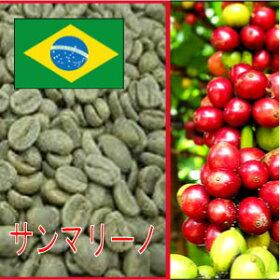 【生豆】サンマリーノサンドライ