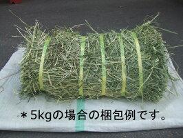 アメリカ産プレミアムホースチモシー1kg