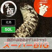 カブトムシ幼虫のエサ 廃菌床カブトムシマット「スーパーBIG」【徳用50L】