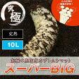 《昆虫マット》超高カロリー! 廃菌床 カブトムシ マット 「スーパーBIG」