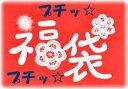 期間限定【ゆうパケット送料無料】 MY Mama プチッ福袋 《 手芸 レース ボタン タグ ハンドメイド ファスナー 生地 お得なセット 》