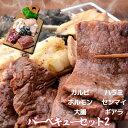 内祝 ギフト プレゼント 誕生日 牛肉 国産牛 バーベキューセット2 カルビ300g ハラミ300g ホルモン100g センマイ100g 大腸100g ギアラ100g 焼肉用 焼肉セット バーベキュー 1