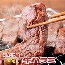 お中元 ギフト 内祝い 牛肉 US ハラミ 100g 横隔膜...