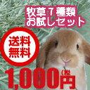 牧草ジプシーの方におすすめ。7種類のチモシーがたっぷり100gずつ試せて送料無料1000円!うさぎ...