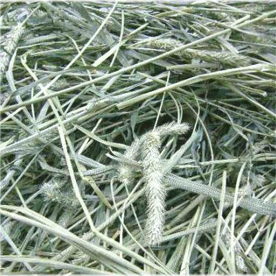 小動物用品, 牧草 2021 1 1kg