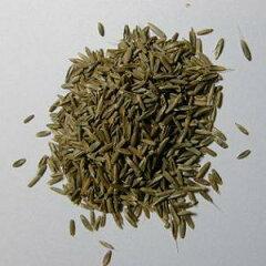 生の牧草をご自宅で育てていただくための種です。育てて うさぎ、モルモット、チンチラ、テグ...