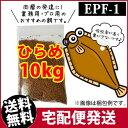 (メーカー直送)日清丸紅飼料ひらめEPF1(2.0mm)10kg/浮上性 コイのごはん 熱帯魚の餌 アロワナのエサ(金魚小屋-希-福岡)