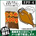 Hirame-epf4-00500