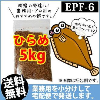 (※宅配)hirame EPF6(浮上性)5kg/鯉魚的飯、熱帶魚的飼料、arowana的飼料(金魚小房間-希-福岡)