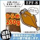 Hirame-epf8-00250