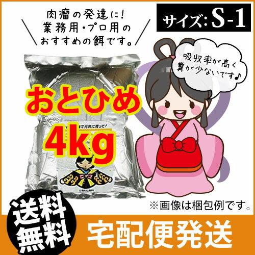(送料無料※宅配) 日清丸紅飼料おとひめS1 (沈降性)4kg/コイのごはん・熱帯魚の餌・アロワナのエサ(金魚小屋-希-福岡)