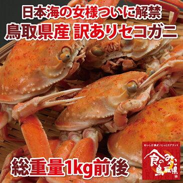 【送料無料】訳あり セコガニ(親ガニ )松葉ガニの雌【茹で】総重量1kg前後【かに/カニ/蟹】