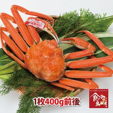 タグ付き特上松葉ガニ(ボイル)小サイズ1枚400g前後 送料無料(ズワイガニ 姿 ずわい蟹 ずわいがに かに カニ 蟹)