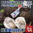 鳥取県産 ブランド天然岩がき 夏輝 約2kg詰め (岩ガキ/岩牡蠣/カキ) 送料無料
