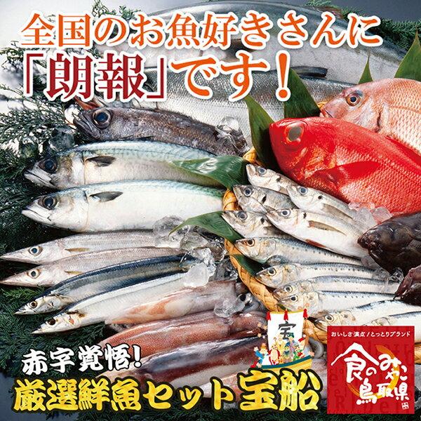 絶対お得!厳選鮮魚セット宝船5400円コース 送料無料