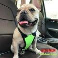 【ペットと安全なドライブに!】犬用・ドライブハーネス・ドライブベストのおすすめは?(小型~中型犬)