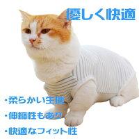 猫用術後ウェアストライプ猫用術後服猫介護服避妊去勢皮膚保護雄雌兼【メール便送料無料】