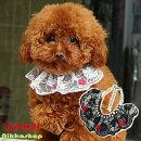 【メール便送料無料】レースパール真珠チョーカーネックウエア(neckwear)ネックレスドッググッズアクセサリー犬猫首輪05P03Dec16