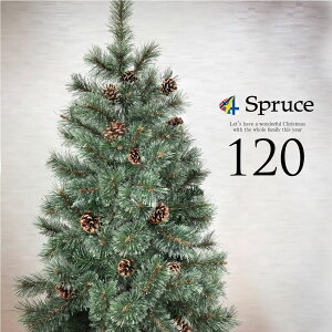 Spruce ヨーロッパトウヒツリー 120cmの写真