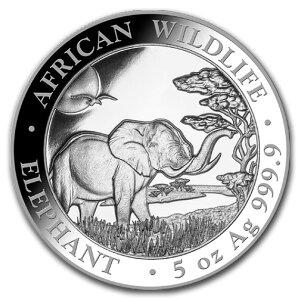 Pièce d'argent éléphant de Somalie 2019 5 oz avec étui transparent Nouveau inutilisé