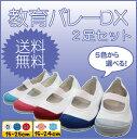 【生活応援価格DX!】上履 教育バレーDX 2足セット 教育...
