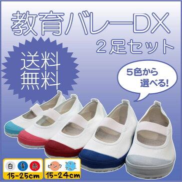 【生活応援価格DX!】上履 教育バレーDX 2足セット 教育シューズ